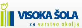 VSVO header logo